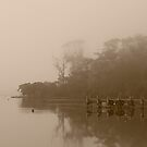The Jetty in Sepia, Wilson Inlet, Denmark by pennyswork