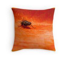 fly on orange poppy patel Throw Pillow