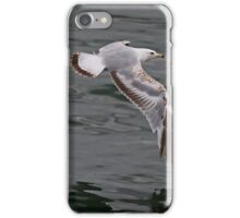 Flying Over Lake Ontario, Canada iPhone Case/Skin