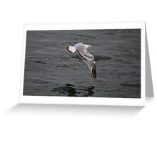 Flying Over Lake Ontario, Canada Greeting Card