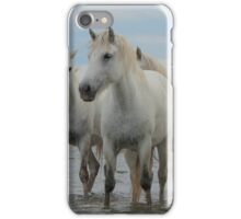 5 Camargue mares iPhone Case/Skin