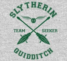 Quidditch - Slytherin - Team Seeker by Divum