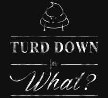 Turd Down For What by Narutal