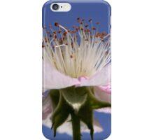 Flower of Rubus Fruticosus iPhone Case/Skin