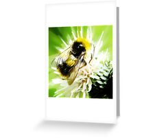 Bumble Bee oil painting Greeting Card