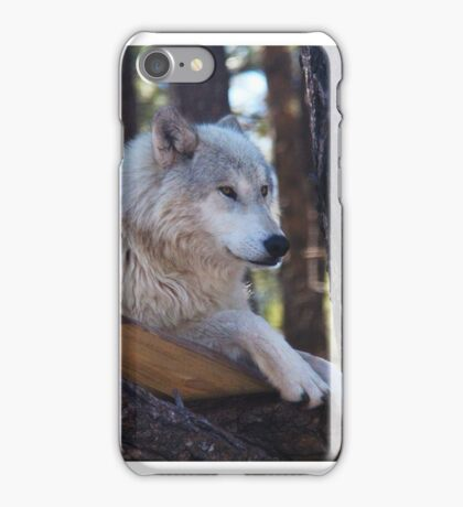 Timber Wolf Sentinel iPhone Case/Skin