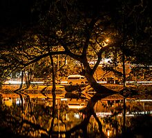 The Night Reflection  by Charman69
