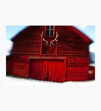 Lensbaby Barn and Antlers Photographic Print
