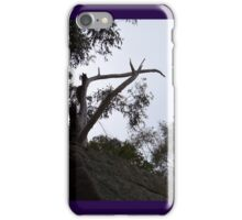 A Sign Made By The Trees iPhone Case/Skin