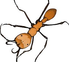 Army Ant by Feral Beagle LLC