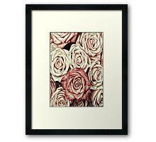 A Bed of Roses Framed Print