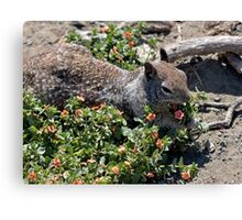 Gonna pick me a nice bunch of flowers for my sweet! Canvas Print