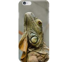 Posing Iguana iPhone Case/Skin