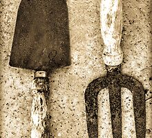 Ye Old Tools by StephenRphoto