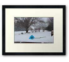 Bitter Blue Framed Print