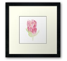 Protea Days Framed Print