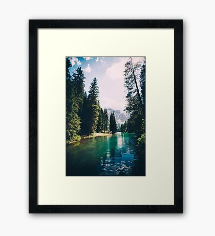 Northern Forest Framed Print