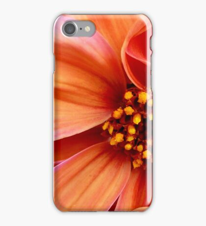 Sunset Condensed iPhone Case/Skin