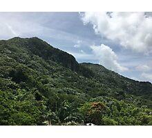 El Yunque, Puerto Rico Photographic Print