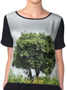 Lonely tree Chiffon Top