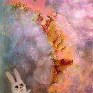 magic encounter (Bunny Inad Book) by Marianna Tankelevich