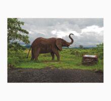 Sculpture of an Elephant One Piece - Long Sleeve