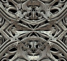 Bones - 3-D Fractal Rendering by Lyle Hatch