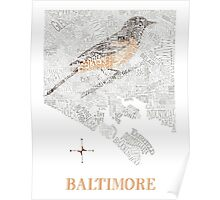 Baltimore City Oriole Neighborhood Map Poster