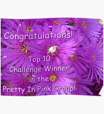 Pretty in Pink Top Ten Challenge Banner Poster