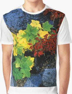 AUTUMN COLOR, YOSEMITE NP Graphic T-Shirt