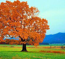 WEDDING TREE by Chuck Wickham