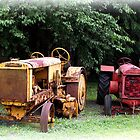 CLEVELAND FORMGRADER and McCormick Deering by nastruck