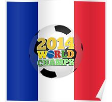 2014 World Champs Ball - France Poster