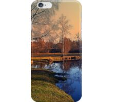 Winter mood on the river IV | waterscape photography iPhone Case/Skin