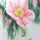Spring Poppy by Bev  Wells