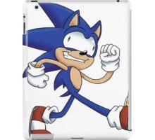 Sonicking Around iPad Case/Skin