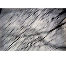 Blurry Tree Branches Photographic Print