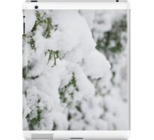 Heavy Snow iPad Case/Skin