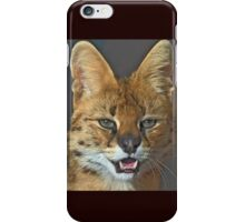 The African Serval cat (click to see large) iPhone Case/Skin