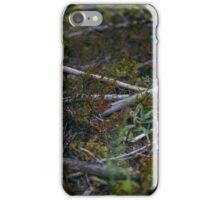 North iPhone Case/Skin