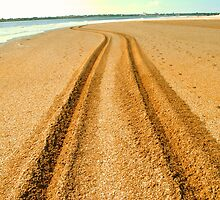 Tracks in the sand by Sean Brett
