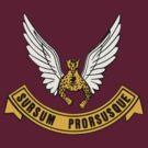 "SAAF 2 Squadron ""Sursam Prorusque"" by warbirdwear"