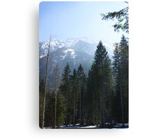 Alpine Austria Canvas Print