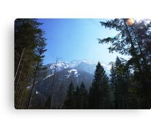 Alpine Austria 2 Canvas Print