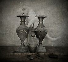 Cat looking into Vase  by Kim-maree Clark