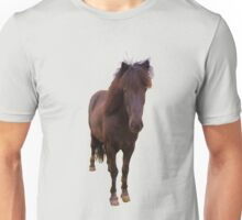 Icelandic horse on iced coffee background Unisex T-Shirt