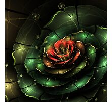 Breathe - Abstract Fractal Artwork Photographic Print