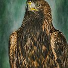 Golden Eagle by M.S. Photography/Art