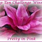 Pretty in Pink Top Ten Challenge Winner Banner by hummingbirds