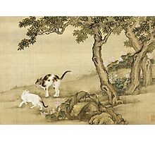 Shen Nanpin - Album Of Birds And Animals (Cats). Forest view: forest , trees,  fauna, nature, birds, animals, flora, flowers, plants, field, weekend Photographic Print
